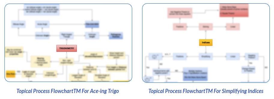 topical process flowcharttm for ace-ing trigo